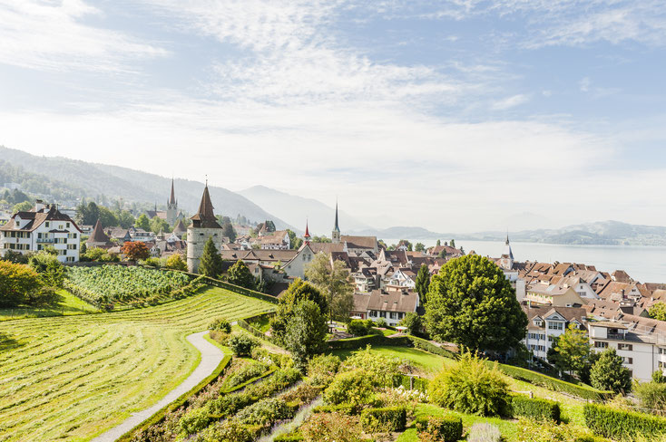 Stadt Zug; Detektei, Detektiv Kanton Zug, Privatdetektiv Kanton Zug, Wirtschaftsdetektei Zug