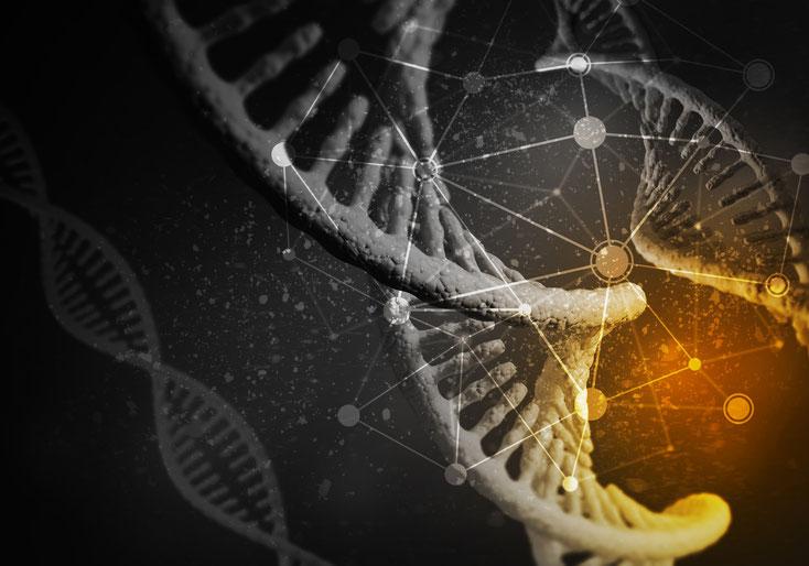 DNA; IT-Experte Schweiz, IT-Service, IT-Spezialist Schweiz, IT-Forensik, IT-Sicherheit Schweiz