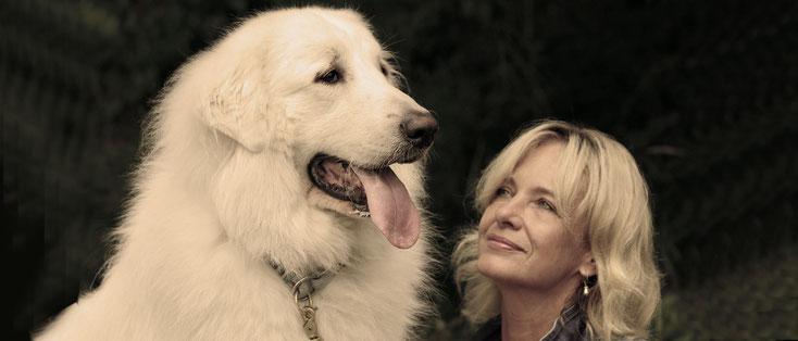 Tierheilpraxis - Stephanie Scheucher