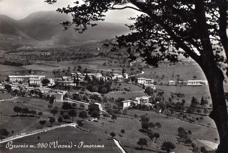 Breonio nel 1955