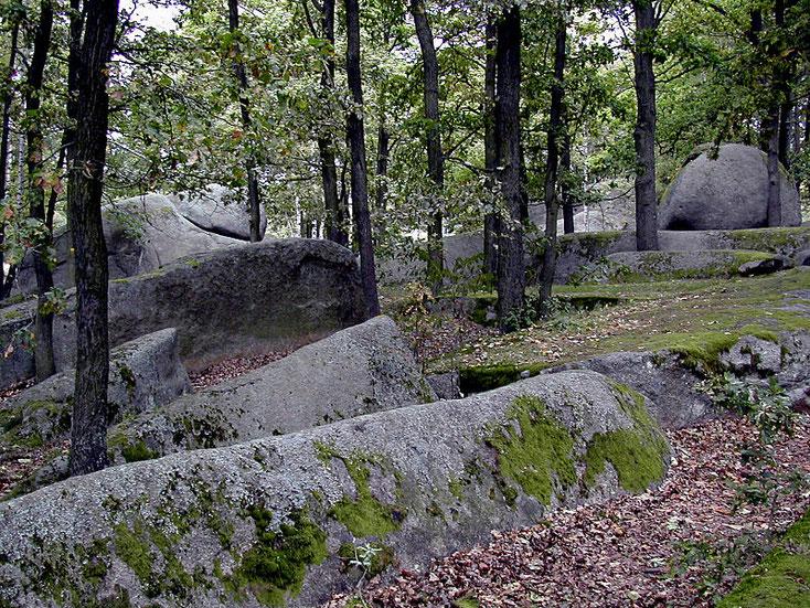 Gewaltige Granitsteine sieht man in dem Natutschutzgebiet Blockheide bei Gmünd in Niederösterreich