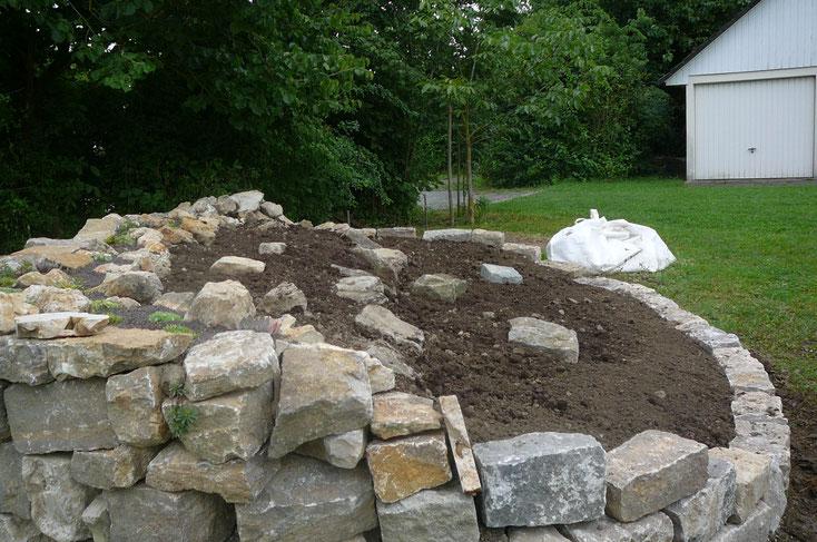 """Die Mauerkrone ist bepflanzt  -  die Beetfläche der """"Stauden-Arena"""" ist für die Bepflanzung vorbereitet."""