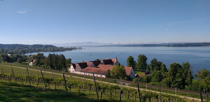 Blick von der Birnau auf den Überlinger See