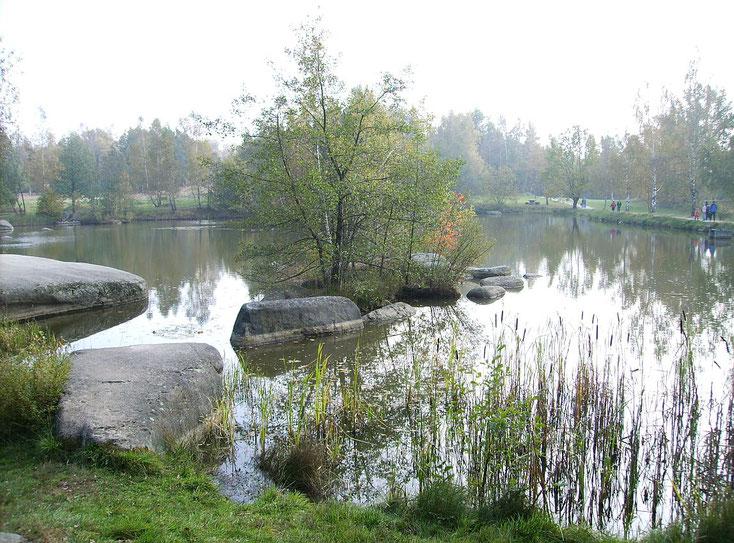 Dieser Teich im Naturschutzgebiet Blockheide wurde künstlich angelegt.