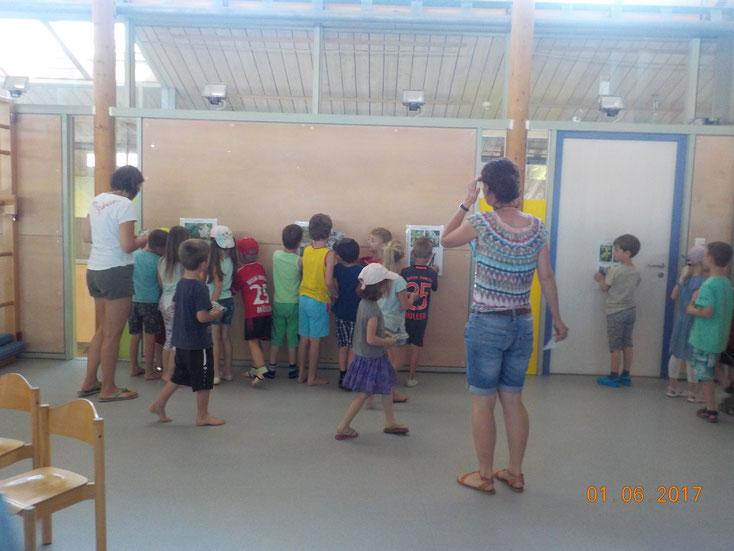 """Die Kinder suchen sich das passende """"Wildfruchtplakat"""""""