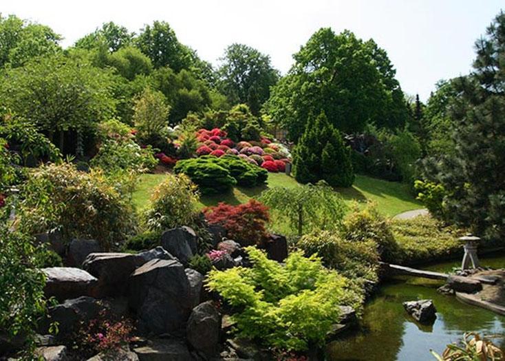Bäume - Sträucher - Steine und Wasser harmonisch vereint