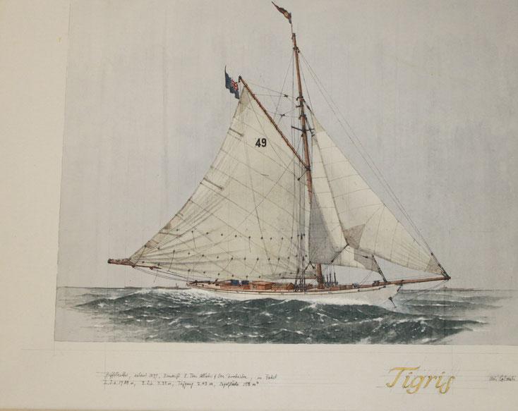 """""""Tigris""""  acryl auf Leinwand  50 x 70 cm"""