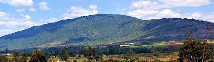 Kilimambogo