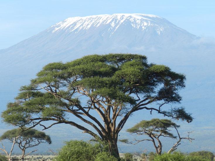 widok na Kilimandżaro, Kenia, Safari w Kenii, Kilimandżaro.
