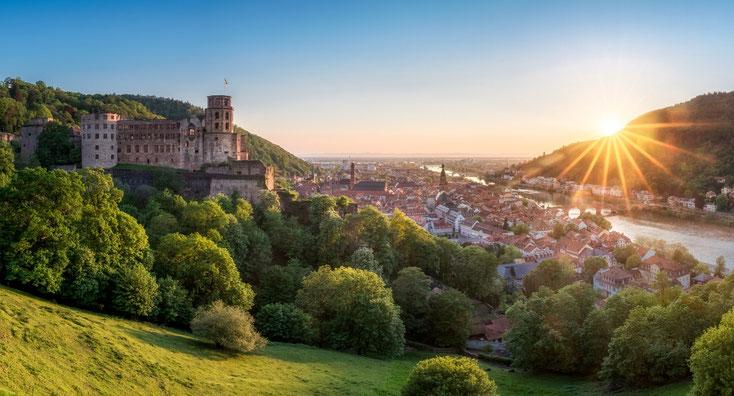 Heidelberg; Wirtschaftsdetektei, Privatdetektiv Heidelberg, Privatdetektei Heidelberg am Neckar