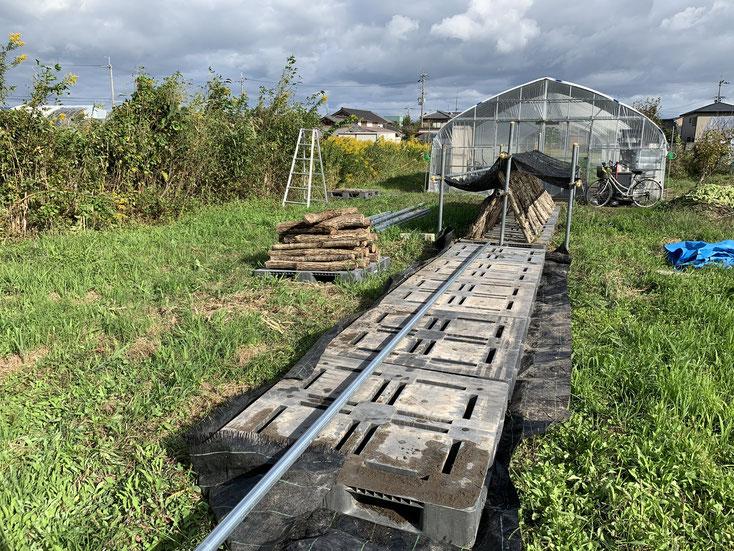 椎茸栽培施設の作成