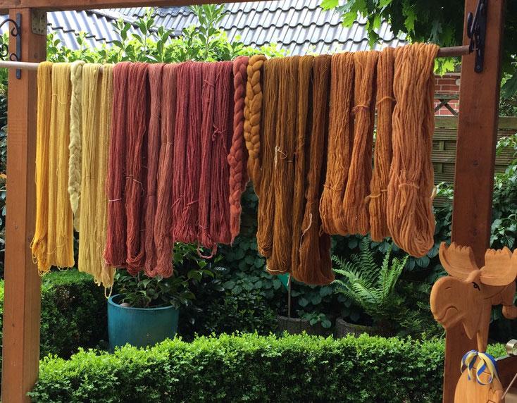 Selbstgefärbte Wolle