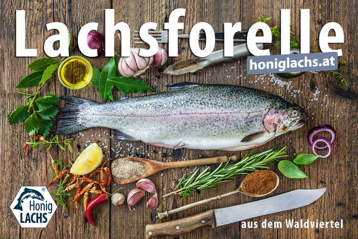 Österreichische Frischfische aus dem Yspertal - Forellen, Lachsforellen, Saiblinge und Karpfen.