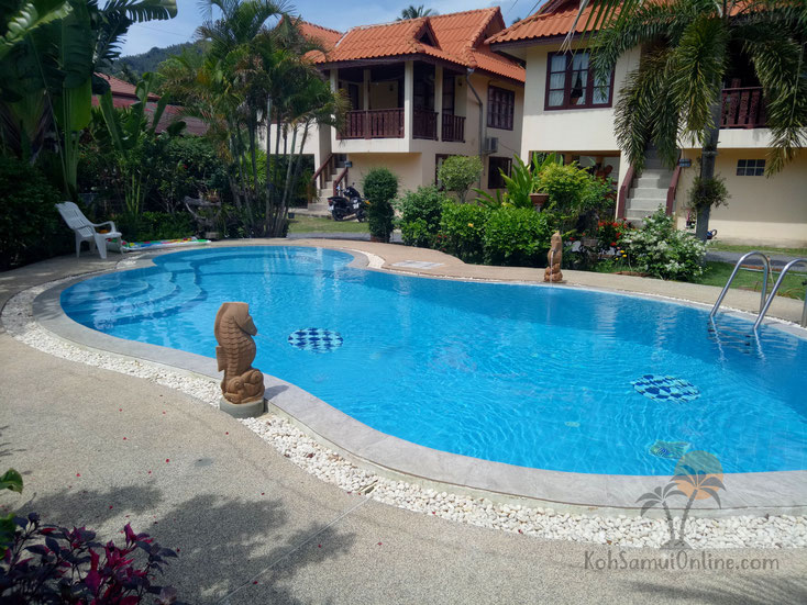 apartments and house to rent in koh samui lamai