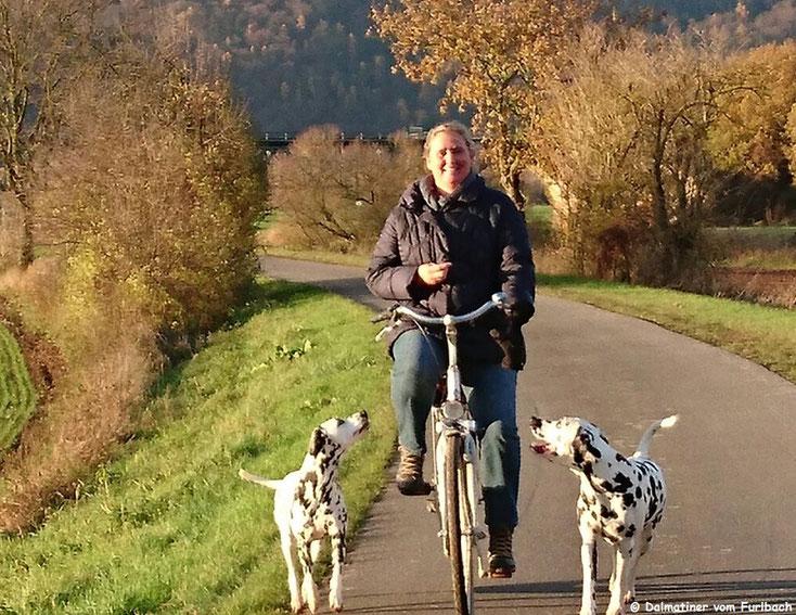 Galina vom Furlbach und Harrison Ford vom Furlbach bei der Radtour...21.11.2016