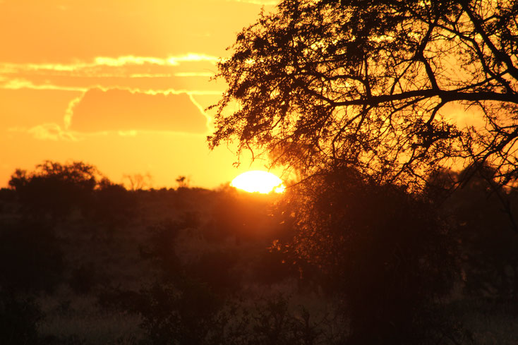 Taita Hills Sonnenuntergang