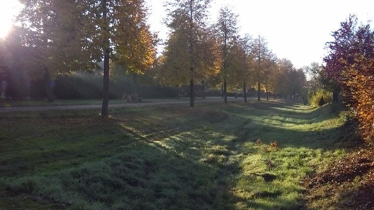 Eine typische Parklandschaft mit Hundetoiletten rechts und links.