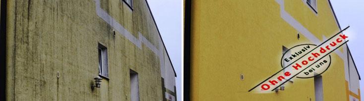 Fassadenreinigung Algen