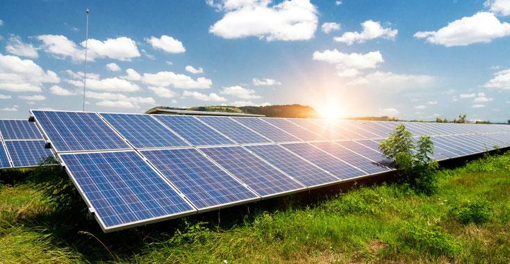 Nachhaltig in Sachwerte investieren: ökologisch, fair und transparent!
