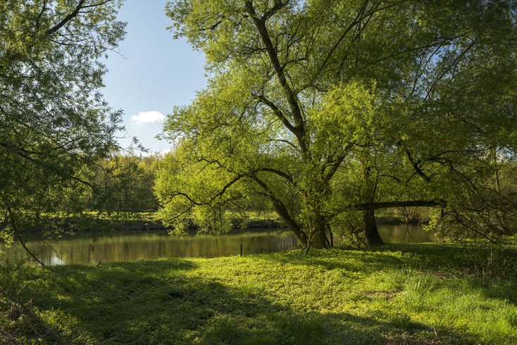 Fluss Agger; Privatdetektei Troisdorf, Wirtschaftsdetektiv Troisdorf, Detektivteam Troisdorf
