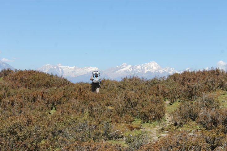 trek langtang - trekking gosaikunda - trek langtang highlands