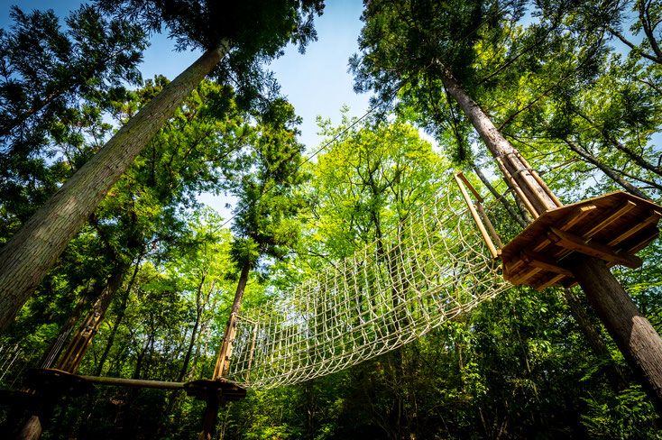 天然の森林を利用して作られたツリートップアドベンチャーなので、森林の爽やかな空気の中で、大人も子どもも楽しくアクティブに過ごせます