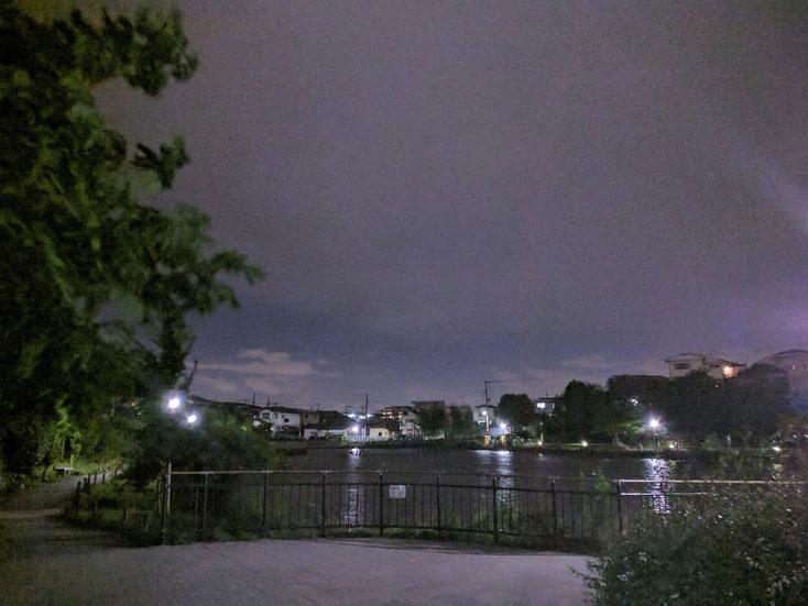 夜の小池公園 湖岸から池を写している