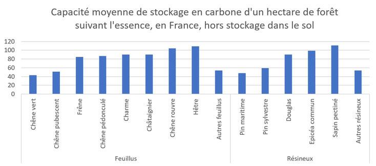 Combien de CO2 absorbe un arbre en fonction de l'essence plantée.