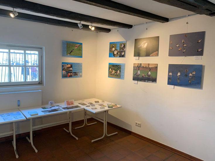 Ausstellung von Fotos vom City-See in Herne