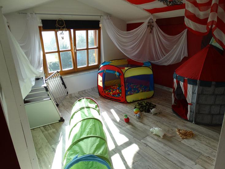 Das Welpenzimmer für später ist bezugsbereit, zur Zeit sind Aymy und die Babys noch bei uns im Wohnzimmer.