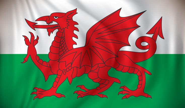 Walisische Flagge; Detektei Wales*, Detektiv Wales*, Privatdetektiv Wales*, Wirtschaftsdetektei Wales*