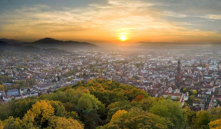 Panorama Freiburg; Detektei, Detektiv Freiburg, Privatdetektiv Freiburg, Wirtschaftsdetektei