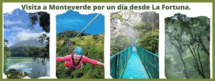 Tour de un día a Monteverde desde La Fortuna - Volcán Arenal