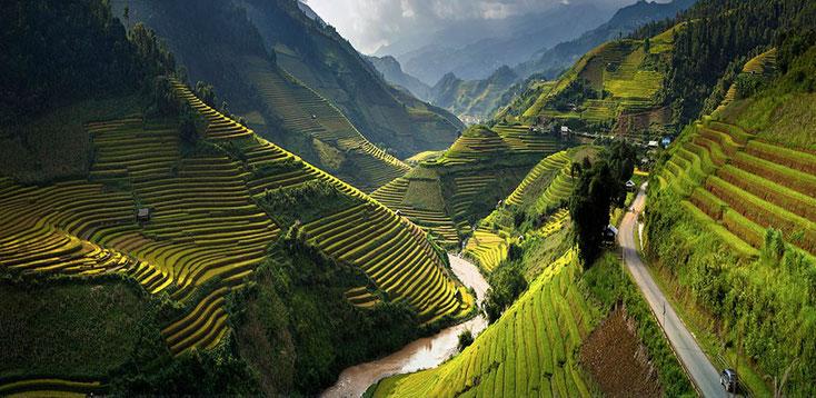 Фото: Тханг Сои