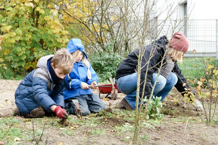 Herbstliches Aufräumen im Waldorfkindergarten Dinslaken