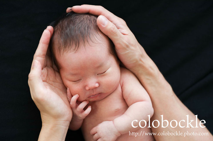 colobockle ニューボーンフォト newbornphoto