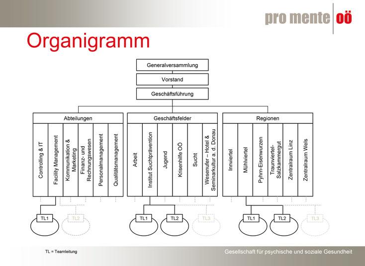 Organigramm von pro mente Oberösterreich