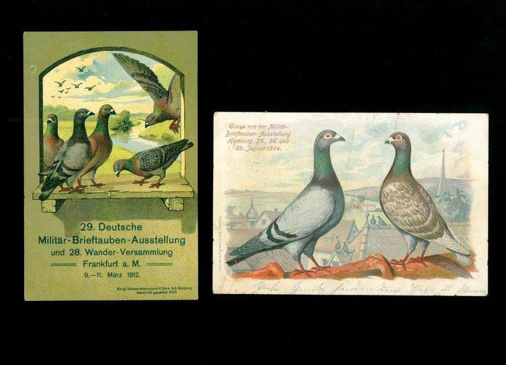 Brieftauben Ausstellung, Verband Deutscher Brieftaubenzüchter, Brieftaube, Geschichte der Brieftaube