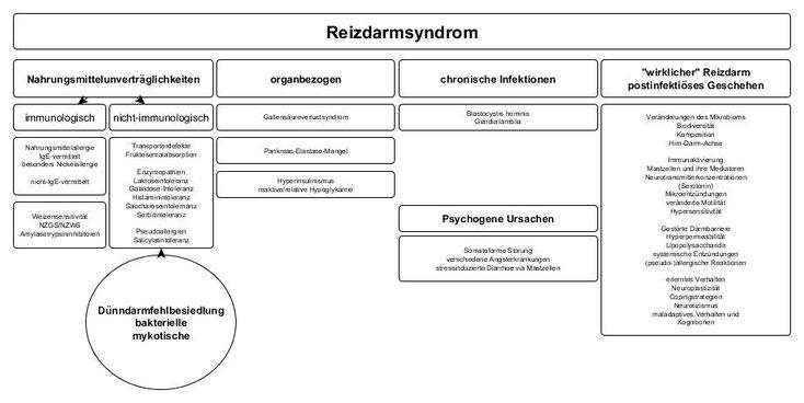 """Schematische Darstellung von Alternativerkrankungen """"hinter"""" dem Reizdarmsyndrom, einschließlich der Nicht-Glutensensitivität (NZGS), nach Thomas Struppe (Stand 2020)"""
