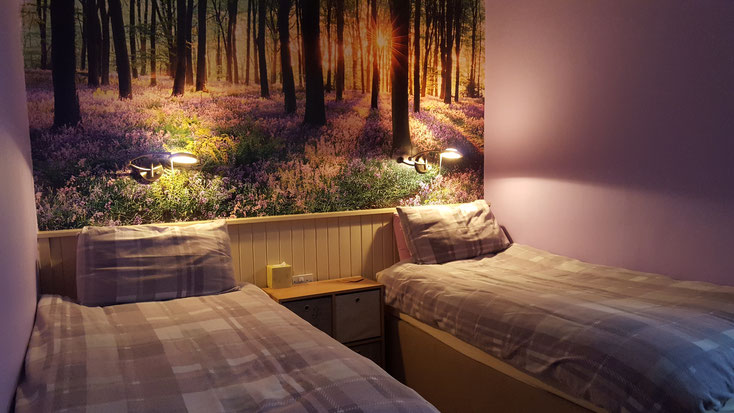 Forest Room Bed and Breakfast Highlands of Scotland NC500