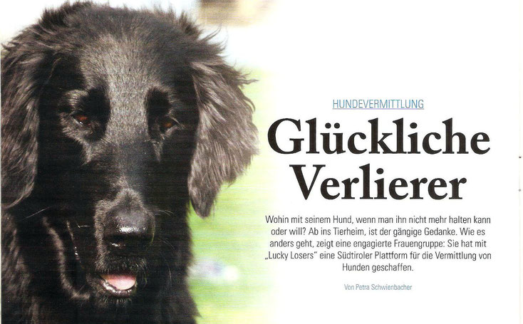 Lucky Losers - Mediazione Cani Alto Adige - Revista IN Suedtirol
