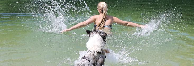 Hund und Mensch. Den Traumpartner finden. In Südtirol