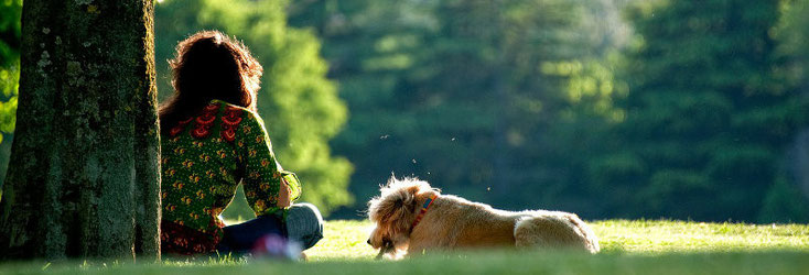 Hund und Mensch - Traumpartner in Südtirol