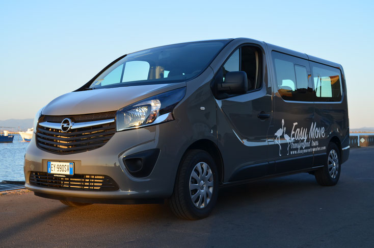 Easy Move Transfer and Tours for disco and night life
