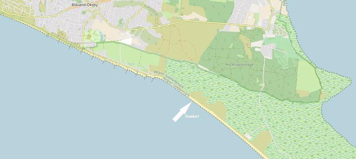 Bild 1 Fundort Strand Ho in Dänemark, Kartenquelle: © OpenStreetMap-Mitwirkende