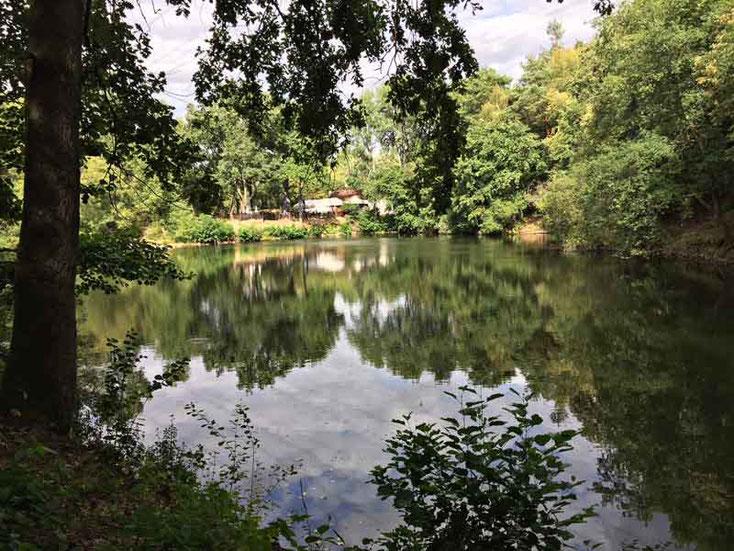 """Blick auf das Restaurant """"Zum grünen See Eck"""" von anderer Seeseite"""