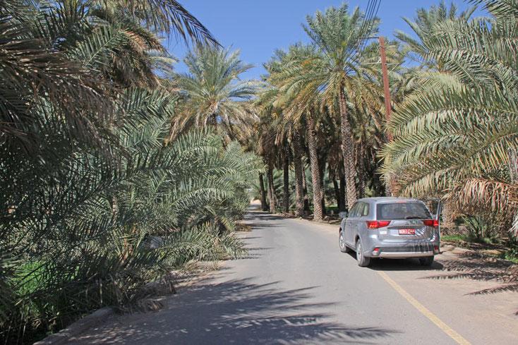 Oman Urlaub 2017; Straße durch die Oasenstadt Al Hamra
