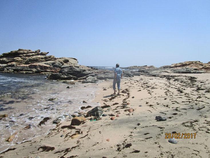 Bild 1 Hier wurde der Sand aufgesammelt aus dem die Foraminiferen ausgelesen wurden.