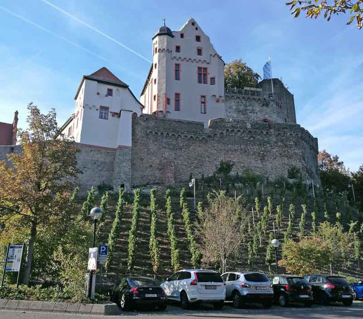 Schleuse, Hainburg, Weingut Simon, Michelbach, Burg Alzenau