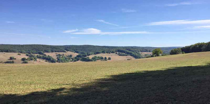Blick ins Tal von der Flecksteinhöhe im Spessart bei Mespelbrunn